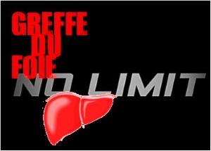 blog no limit